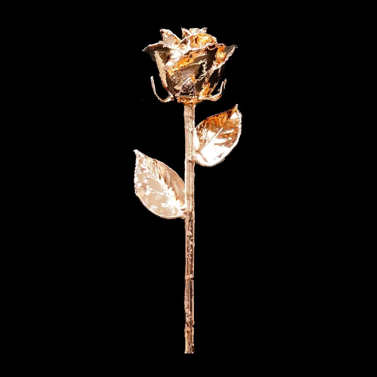 お母さんも喜ぶ!女性に人気の特別なバラ「ピンクゴールドローズ」|Gold Presttige