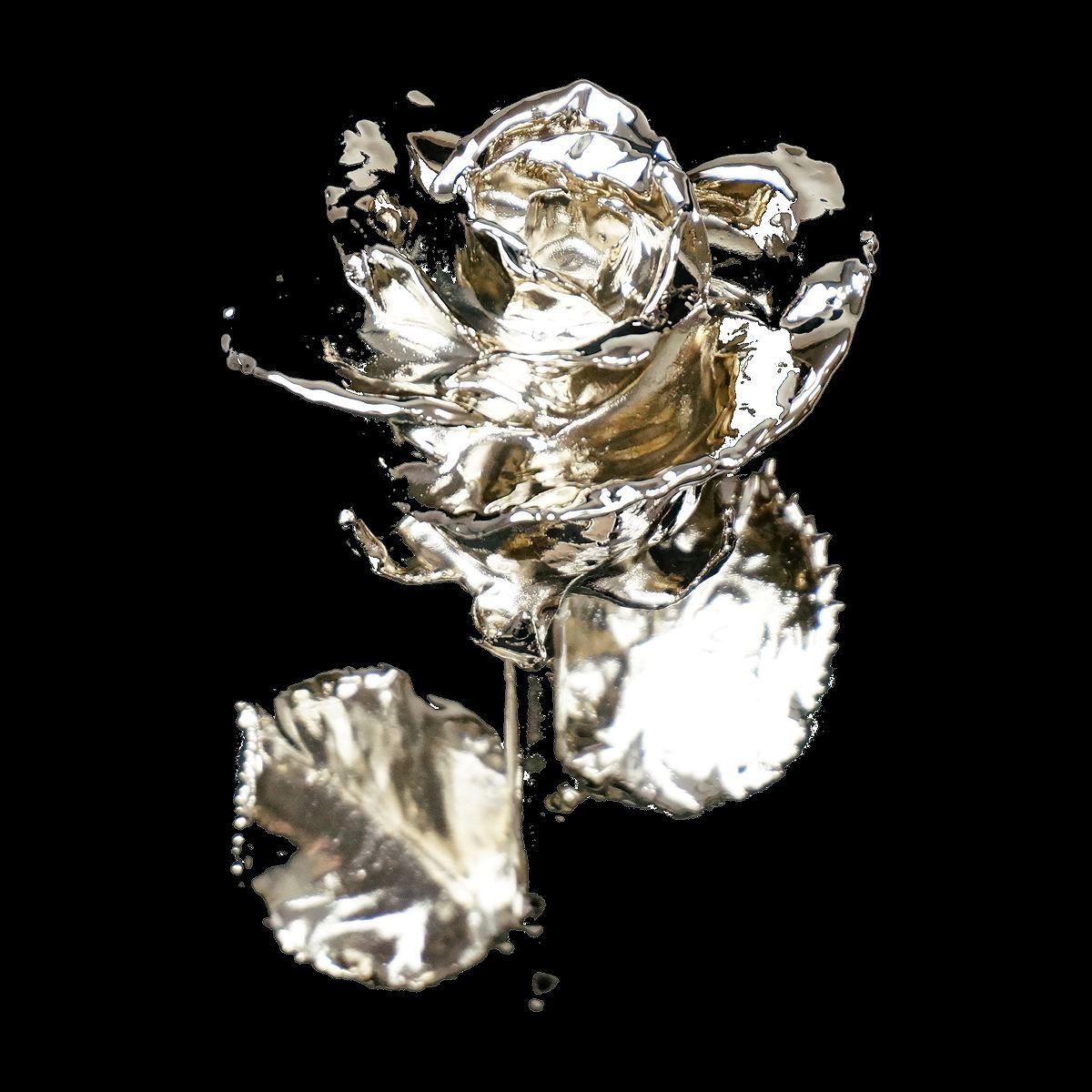 母の日ギフトに贈りたい特別なバラ「プラチナローズ」|Gold Presttige