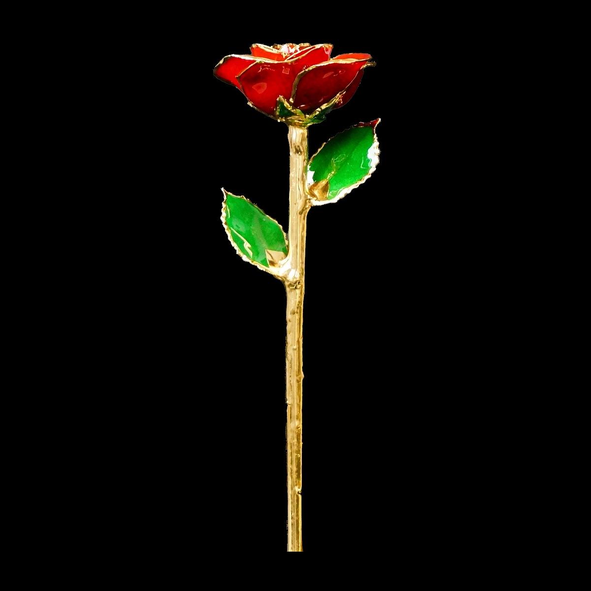 母の日ギフトに。本物の薔薇を、24金で縁取りした「レッドローズ」